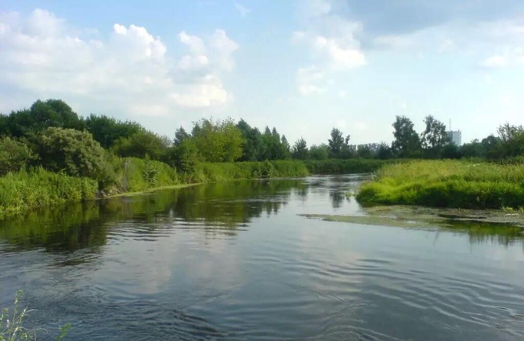 рыбалка в городе жуковский