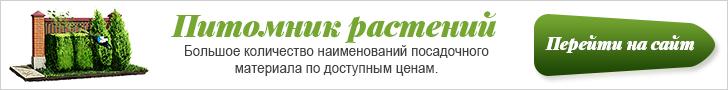 pitomnik banner 728x90